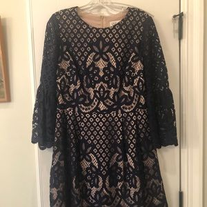 Eliza J lace overlay fit and flare dress